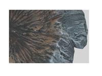 Amera: Future Zone - Annihilation Crater image