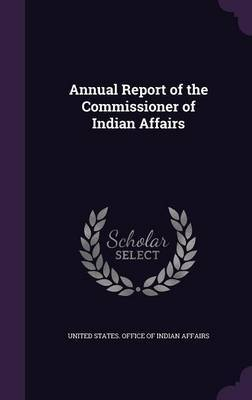 Annual Report of the Commissioner of Indian Affairs image