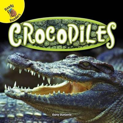 Crocodiles by Darla Duhaime
