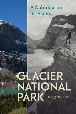 Glacier National Park by George Bristol image