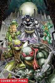 Batman/Tmnt Vol. 1 by James Tynion
