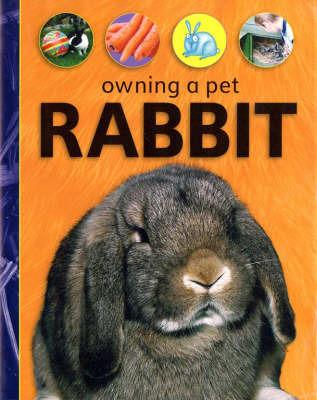 Rabbit by David Glover