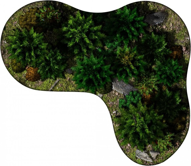 Lush Forests - 2D Terrain Tiles | at Mighty Ape NZ