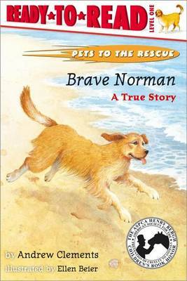 Brave Norman by Andrew Clements