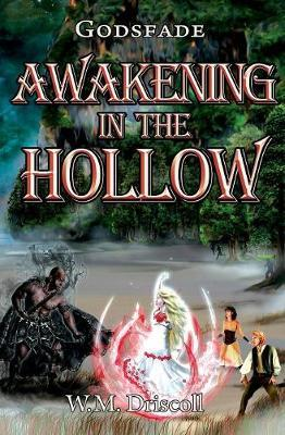 Awakening in the Hollow by W M Driscoll