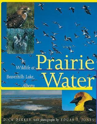 Prairie Water by Dick Dekker