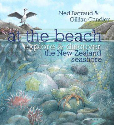 At the Beach by Ned Barraud