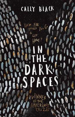 In The Dark Spaces by Cally Black image