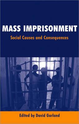 Mass Imprisonment image