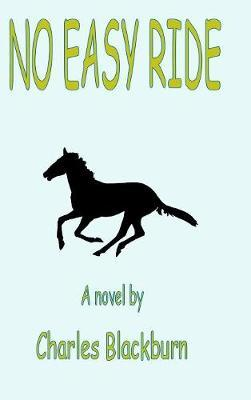No Easy Ride by Robbie Robinson