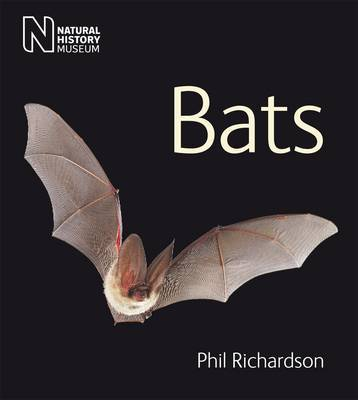 Bats by Phil Richardson