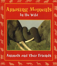 Amusing Moments in the Wild by Stephanie Maze image