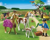 Playmobil: Paddock with Horses and Foal (5227)