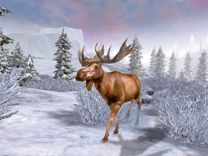 Cabela's Big game Hunter 2007 Alaskan Adventures for PC Games image