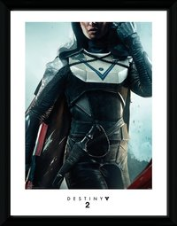 Destiny 2: Hunter - Framed Print