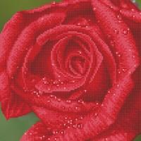 Diamond Dotz: Facet Art Kit - Rose Dew (Intermediate)