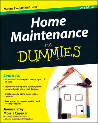 Home Maintenance For Dummies by James Carey