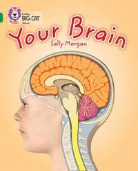 Your Brain by Sally Morgan