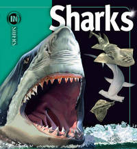 Sharks by Beverly McMillan