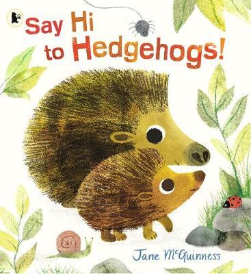 Say Hi to Hedgehogs! by Jane McGuinness image
