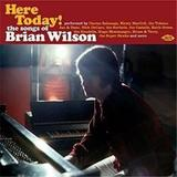 Here Today! The Songs Of Brian Wilson by Various Artists