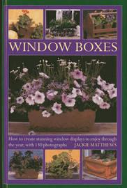 Window Boxes by Jackie Matthews