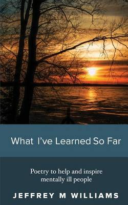 What I've Learned So Far by Jeffrey M Williams image