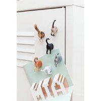 Kikkerland Cat Butt Magnets (set of 6)