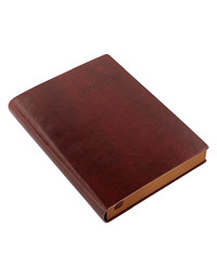 Letts Lecassa 2018 Diary A6+ Day to Page w/ appts (Brown)