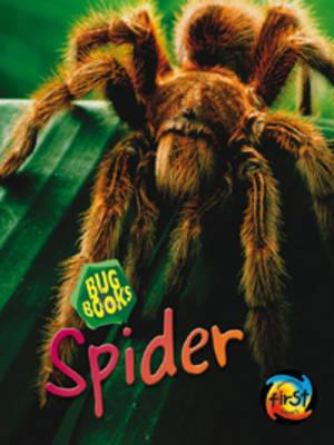 Spider by Karen Hartley