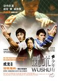 Wushu on DVD