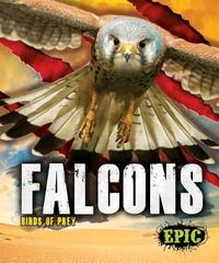 Falcons by Nathan Sommer