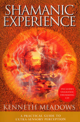 Shamanic Experience by Kenneth Meadows image