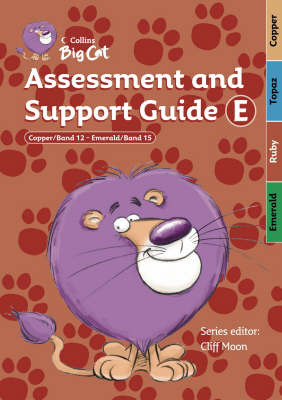 Assessment and Support Guide E: Bands 12-15 image