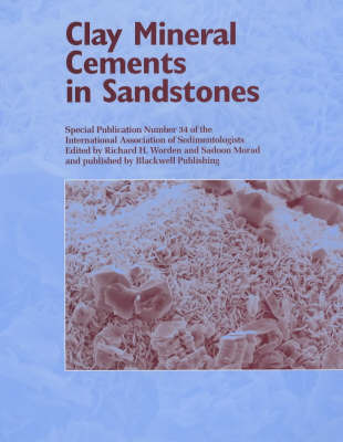 Clay Mineral Cements in Sandstones image