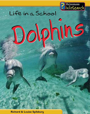 Life in a School of Dolphins by Louise Spilsbury image