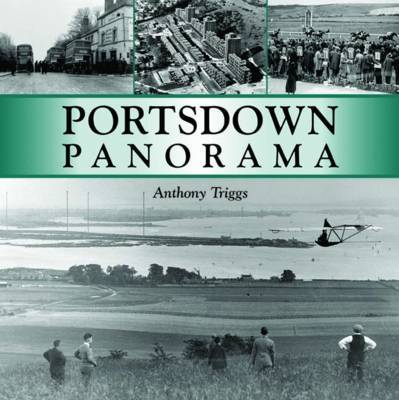Portsdown Panorama by Anthony Triggs image