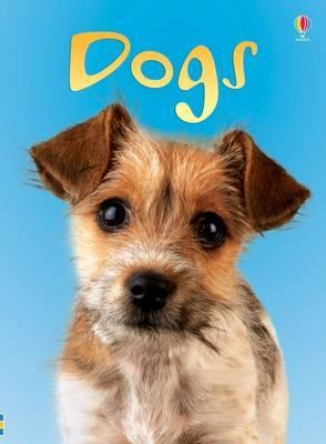 Dogs by Emma Helbrough