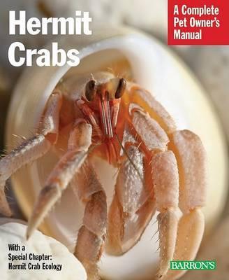 Hermit Crabs by Sue Fox