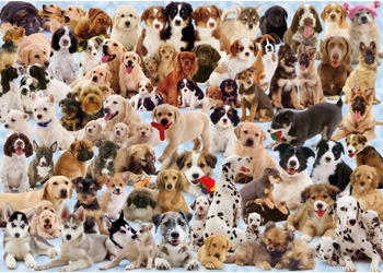 Ravensburger 1000pc Puzzle - Dogs Collage image