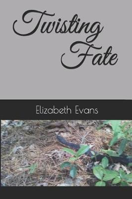 Twisting Fate by Elizabeth Evans image