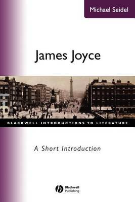 James Joyce by Michael Seidel image