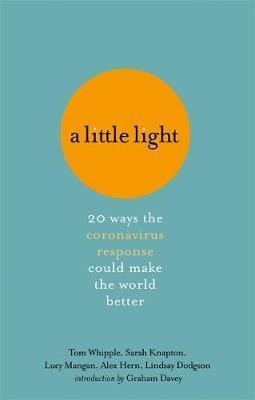 A Little Light by Tom Whipple