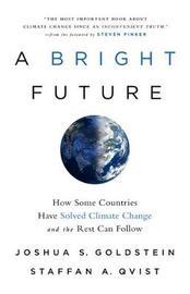 A Bright Future by Joshua S Goldstein