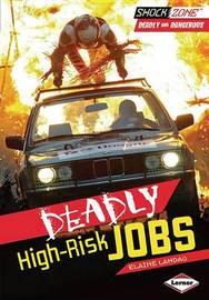 Deadly High-Risk Jobs by Elaine Landau