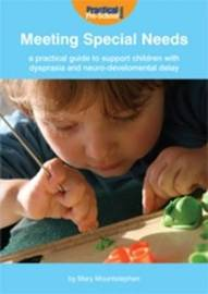 A Practical Guide to Support Children with Dyspraxia and Neurodevelopmental Delay by Mary Mountstephen