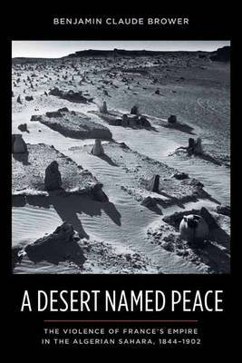A Desert Named Peace by Benjamin C. Brower
