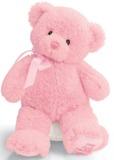 """Gund: My First Teddy 10"""" - Pink"""