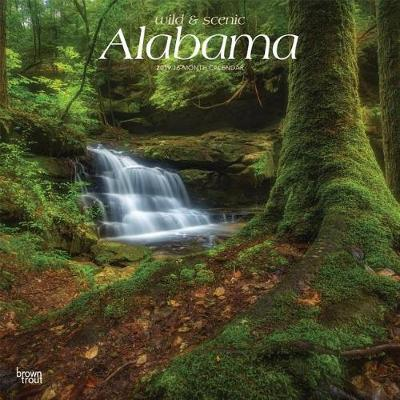 Alabama Wild & Scenic 2019 Square by Inc Browntrout Publishers