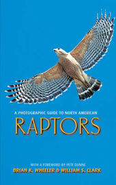A Photographic Guide to North American Raptors by Brian K. Wheeler image